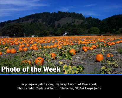 A pumpkin patch along Hightway 1 north of Davenport. (Photo Credit: Captain Alterber E. Theberge, NOAA Corps (ret.).